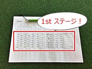 アイアンの数値表, datasheet of iron by HONEST