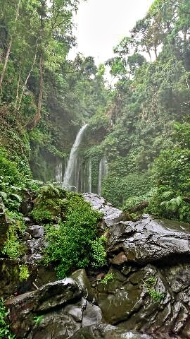 たどり着いた先にあるもの。it's my favorite waterfall